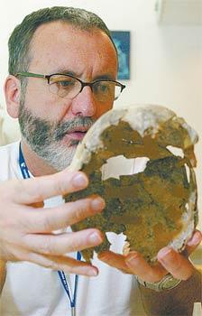 Walter Neves examina crânio: pessoalmente ele é ainda mais gato