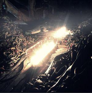 """""""Tudo que se arrasta pela terra"""" também tem lugar na Arca. (Crédito: Divulgação)"""