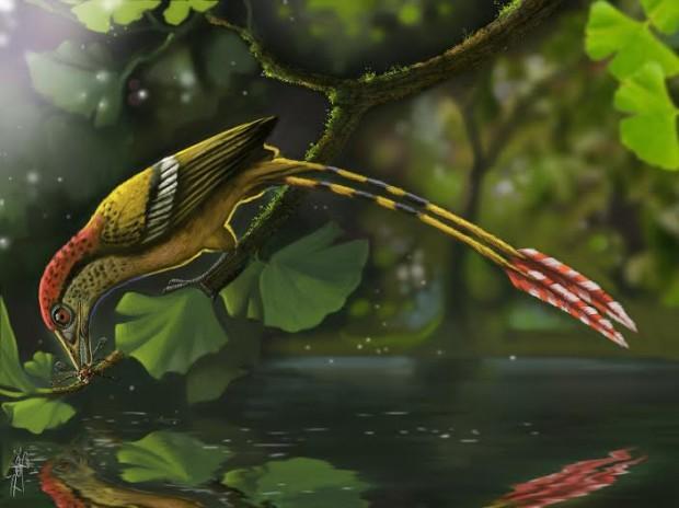 Reconstrução artística da espécie extinta de ave do Ceará, ainda sem nome científico (Crédito: Deverson Pepi/Divulgação)