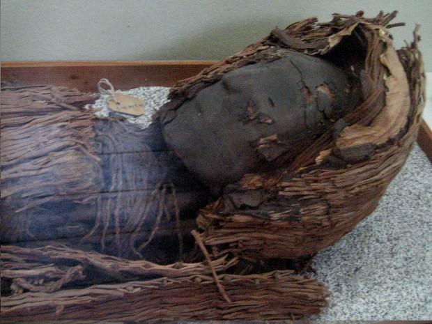 Exemplar de uma das Múmias Negras dos chinchorros (Crédito: Creative Commons)