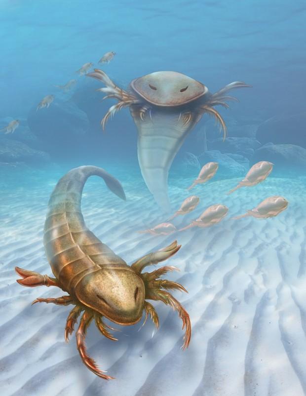 Reconstrução do escorpião-do-mar, que era tão grande quanto um ser humano. (Crédito: Patrick Lynch/Universidade Yale)