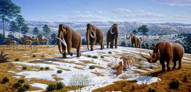 Todo mundo junto: leões, rinoceronte, mamute e cavalos selvagens (Crédito: Mauricio Antón)